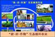 平江县做标书的公司-标书投标、平江县报告能做