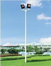 球场照明灯6-8米高灯杆供应南宁?#28783;?#20307;育生产厂家图片