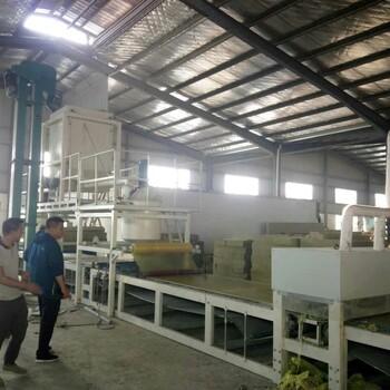 宁波水泥砂浆复合板设备机制双麻面岩棉复合板生产线规格齐全