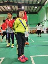 珠海中小學生羽毛球培訓春季班招生