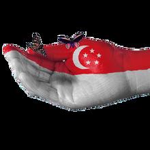 从中国家具运到新加坡的流程要多久到门费用要多少钱?运家具到新加坡国际海运空运