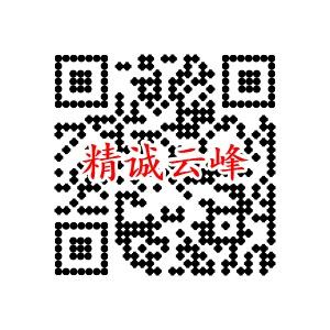 深圳市精誠云峰科技有限公司