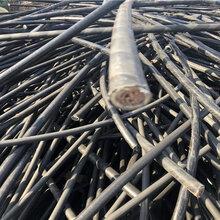 乐山电缆回收-(值得信任)乐山630铝线回收