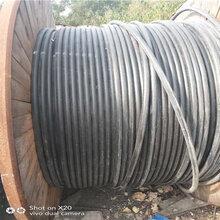 湖北新洲工地电缆回收免费估价