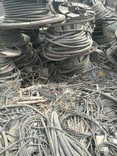 长葛电缆回收-(联系电话)长葛630铝线回收