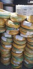 铜芯低压电缆回收每天更新图片