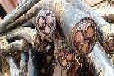 吉林整軸電線回收—母線排回收