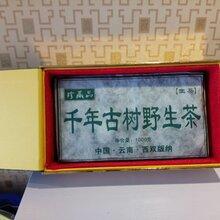 小懒猪千年古树野生茶生普90年代普洱茶图片