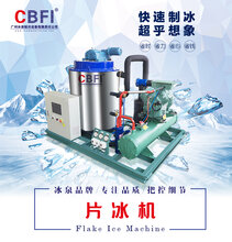 广州冰泉日产量300kg~30吨片冰机小型商用鳞片冰机工业雪花制冰机供应