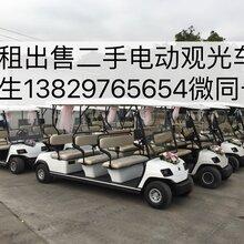 广州佛山出租租赁电动观光车楼盘看房车出售二手高尔夫球车旅游观光车电动老爷车