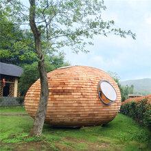 民宿木屋炭木屋双层防腐木屋别墅蛋型异形度假木屋售货木屋图片