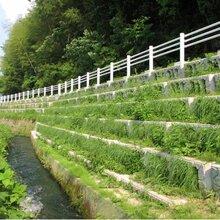 阶梯式生态护坡混凝土河道护岸厂家图片