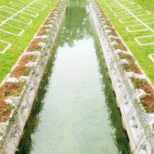 河道生態護坡框河堤邊坡選中力通新材圖片