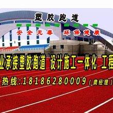 襄阳塑胶跑道混合型跑道施工襄阳塑胶跑道厂家