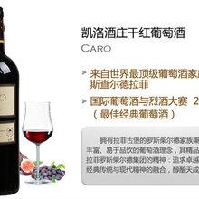 廣州進口紅酒供應批發阿根廷卡羅紅葡萄酒圖片