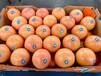 三岔路南非紅心西柚葡萄柚批發廣州江南市場