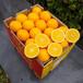 進口甜橙南非金巴利臍橙15kg裝批發供應