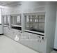 重庆实验室厂家定制PP通风柜/PP功能柜/pp试剂柜