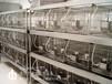 重庆洁净室厂家/P2实验室厂家/恒温恒湿室厂家