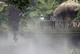 莆田景观人工造雾