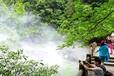 深圳供应高压造雾机