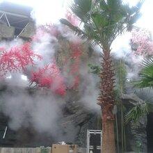 秦皇岛雾化系统价格图片