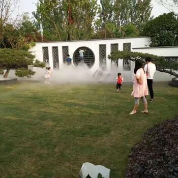 无锡人工造雾设备