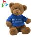 工厂新款坐姿穿衣泰迪熊毛绒玩具公仔亚马逊爆款来图来样定制