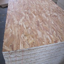 OSB欧松板(定向结构刨花板)桦木面9mm图片
