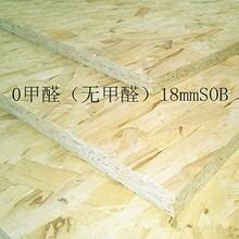OSB欧松板(定向结构刨花板)进口级别欧松板图片