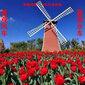 荷蘭風車制作專業制作荷蘭大風車的公司選擇螞蟻美陳全國發貨及安裝現貨多多圖片