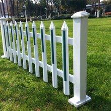 上海信奥pvc草坪护栏/金属草坪护栏/塑钢护栏/道路草坪护栏/园林护栏订做安装图片