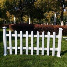 上海信奥草坪护栏/花园围栏/pvc护栏/小区绿化围栏/公园护栏/厂家直销安装定制图片