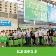 2019年中国(上海)国际锂电池工业展——上海电池展