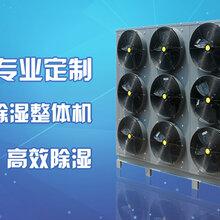 霸王花烘干机空气能热泵烘干机省钱高效又好用