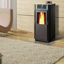潍坊生物质家用采暖壁炉,自动点火送料,自动温控除焦,生物质热风炉图片
