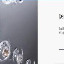 广元午阳阳光板8mm阳光板车间隔断PC板材批发厂家图片