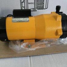 日本世博磁力泵NH-300PSpanworld磁力泵圖片
