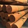 景观木材户外防腐木