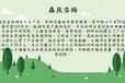 青河县报告编写公司写可研报告