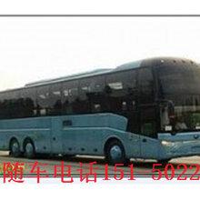 晋江到凤凰的长途客车CTKS556线路一览表