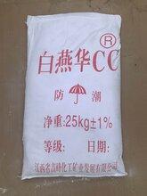 广东地区直销,CC粉,CC-R粉,碳酸钙,纳米碳酸钙图片
