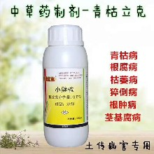 青枯立克杀菌剂防治白芨叶斑病图片