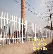 优游娱乐平台zhuce登陆首页鼓楼区电力围栏送立柱吗?包运费吗?图片