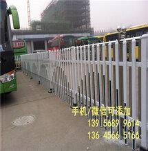 济源市电力栅栏塑钢护栏哪家好?安装费多少?图片