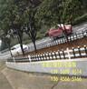 宿州市泗县塑钢围栏、塑钢栅栏哪家好?