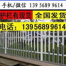 性價比高的廠家九江共青城塑料籬笆綠化帶草坪護欄圖片
