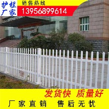吉安井冈山pvc小区围墙护栏pvc小区围墙围栏护栏价格多少图片