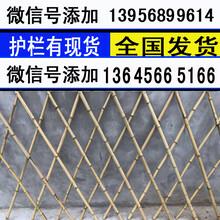 池州青阳花坛草坪护栏塑料栅栏图片