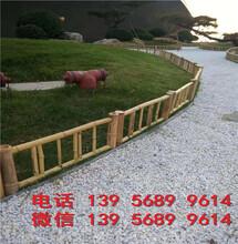 衢州常山花园隔断装饰攀爬架竹杆爬藤架出售图片